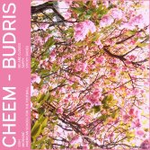 Cheem / Budris - Split EP (2016)