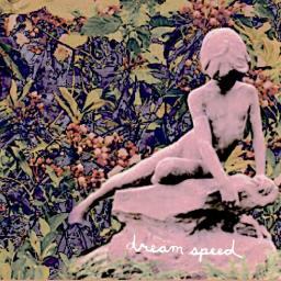 Skating - Dream Speed (2018)